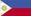 Flag Of Philippines Copy