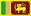 Flag Of Sri Lanka Copy